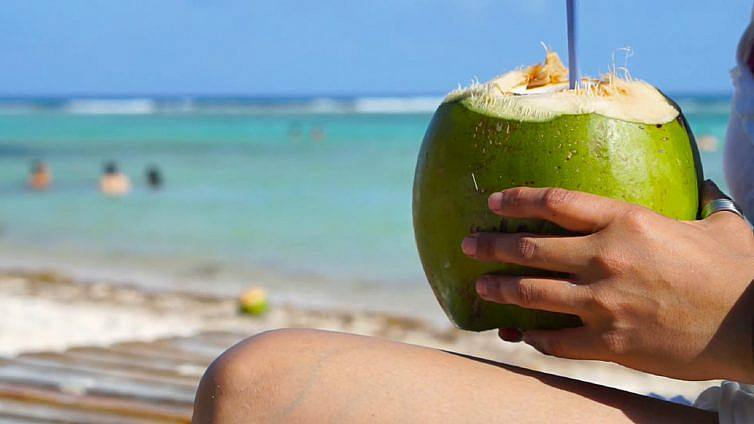 Já pode beber água de coco em palhinhas comestíveis na Praia da Saúde