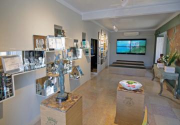 Já foi inaugurada a renovada Sala do Município de Setúbal