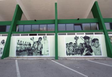 Já viu os novos murais do Estádio do Bonfim com as velhas glórias do clube?